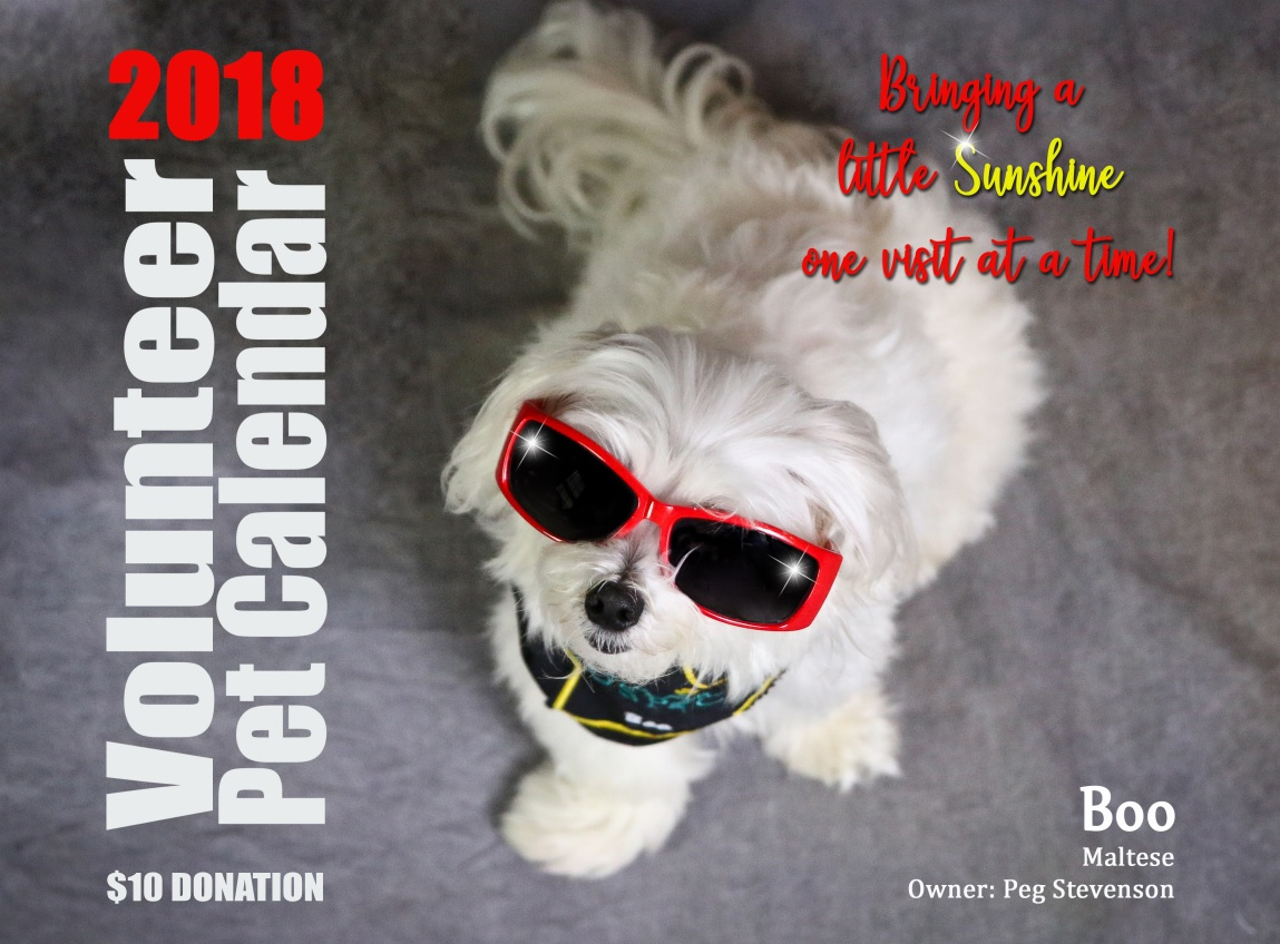 2018 niagara hospice pet calendar product details the 2018 pet calendar featuring the pets of niagara hospice volunteers that are certified for pet therapy visits the volunteers take their pets to visit 1betcityfo Image collections